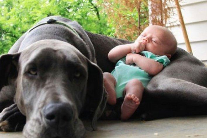 8 Bí Mật Để Nuôi Con Luôn Khoẻ Mạnh Mẹ Nào Cũng Cần Biết