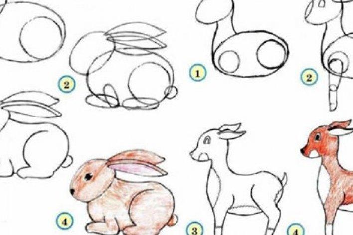 Cách Vẽ Đơn Giản Các Loài Động Vật Dễ Thương Cho Trẻ