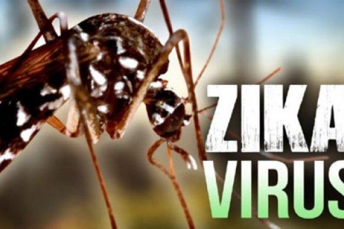 16 Quận Huyện Tp.HCM Đã Mắc Zika - Các Mẹ Cẩn Thận Đề Phòng